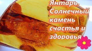Янтарь.  Солнечный камень счастья и здоровья