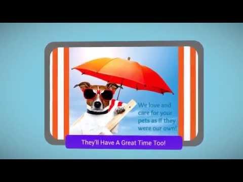 Panama City Beach pet sitter Phone 1-954-815-7533