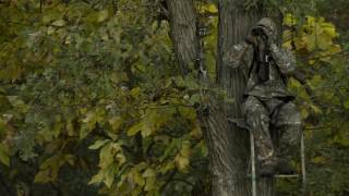 Choosing The Perfect Tree For A Deer Stand | Cabela
