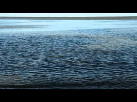 Short Film | Project 40: Lake Winnipeg Research Consortium