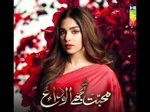 Download Mohabbat tujhe alvida OST   slow version   sad version   unplugged version   Sahir Ali Bagga   HumTV