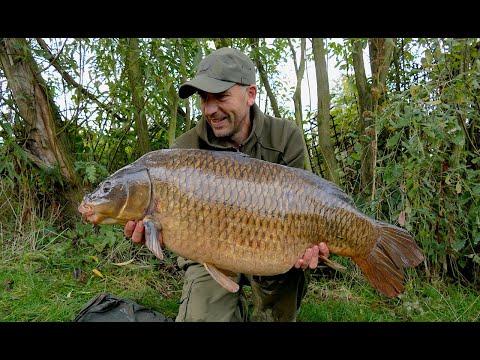 The Missing Common - Carp Fishing Autumn Blog 2016