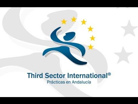 Third Sector International: Interns insight