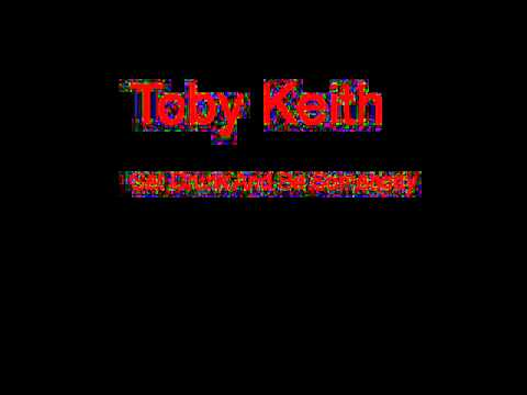 Toby Keith Get Drunk And Be Somebody + Lyrics