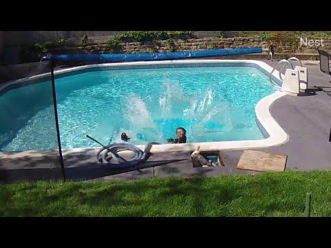 Rabbit Hops Out, He Hops In || ViralHog