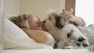 Cute Pets Waking Up Owners Compilation  - Cutes Alarm Clock Ever thumbnail