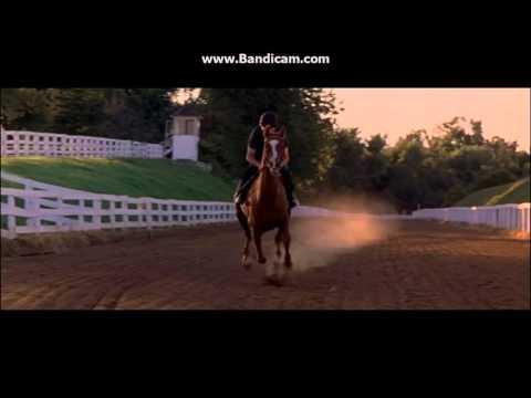 music video: Dreamer mijn droompaard
