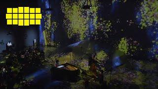 Chihiro Yamanaka – Taxi   Yellow Lounge (live from teamLab Borderless, Tokyo/2018)