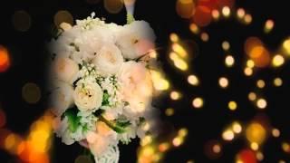 Книга пожеланий на свадьбу Gilliann Pearl Ivory Bows AST076