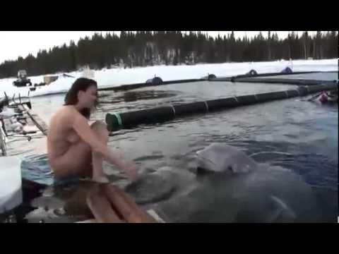 Порно Видео Секс Видео