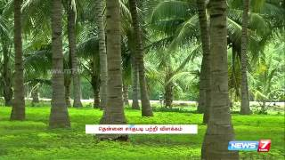 Awareness about new technology  to grow coconut at Salem | Tamil Nadu | News7 Tamil |