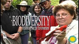 Biodiversity - Healthcare for the Environment