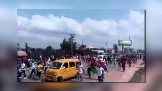 Pro-Biafran