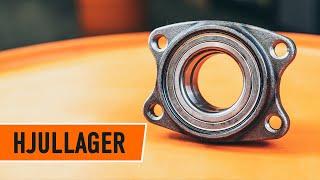 VW-videoguider – håller din bil i toppform