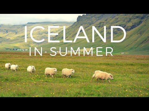 WHAT IS ICELAND LIKE IN SUMMER? 🇮🇸🤔? Travel vlog