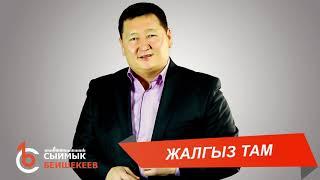 Download lagu ЖАЛГЫЗ ТАМ – Сыймык Бейшекеев