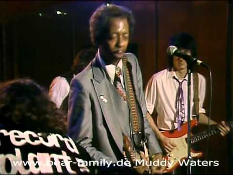 Muddy Waters Live At The Checkerboard Lounge (DVD)