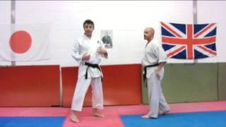 awase zuki Nijushiho Bunkai Strategies 2013 week 4 henka koryu oyo jutsu