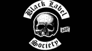 Black Label Society- Paradise City Cover