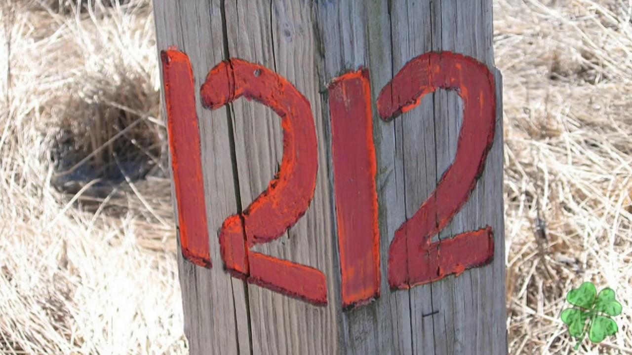 Знаки ангелов   цифры.  1. Комбинации с цифрой 1.