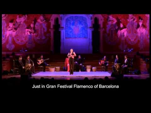 Flamenco Barcelona - Flamenco At Palau de la Música by Tablao Flamenco Cordobes
