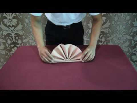 Napkin Folding - DTH2023 - Food And Beverage Services