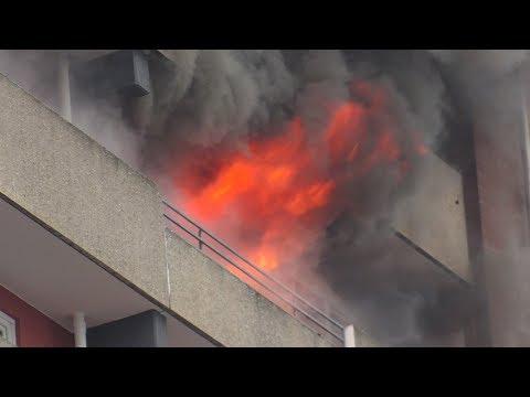 [FLASHOVER BEI HOCHHAUSBRAND]- Wohnungsbrand Im 9. OG   Vollbrand   Großeinsatz Feuerwehr Düsseldorf