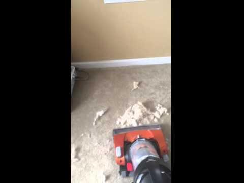 Eureka Brushroll Upright Vacuum Product review