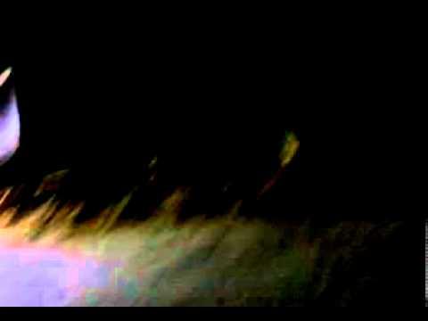 Keean Mixer Trailer.