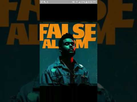 The Weekend -  False Alarm