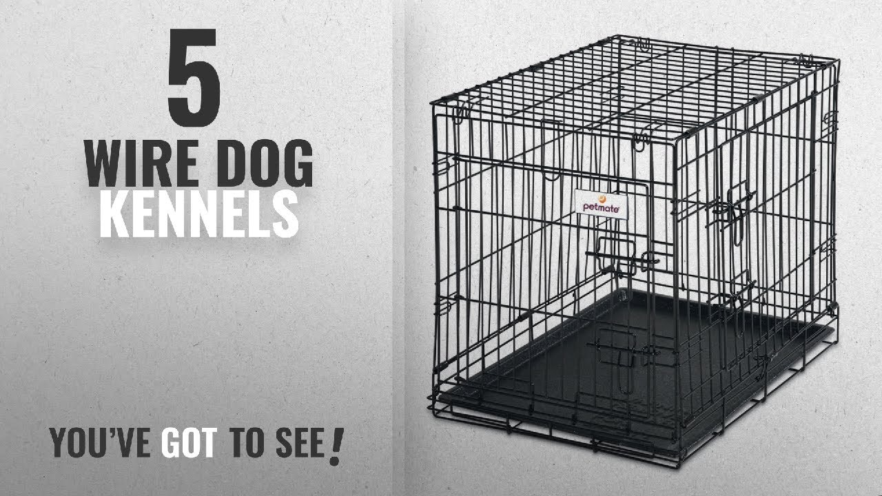 Top 5 Wire Dog Kennels [2018 Best Sellers]: Petmate 24-Inch 2-Door ...