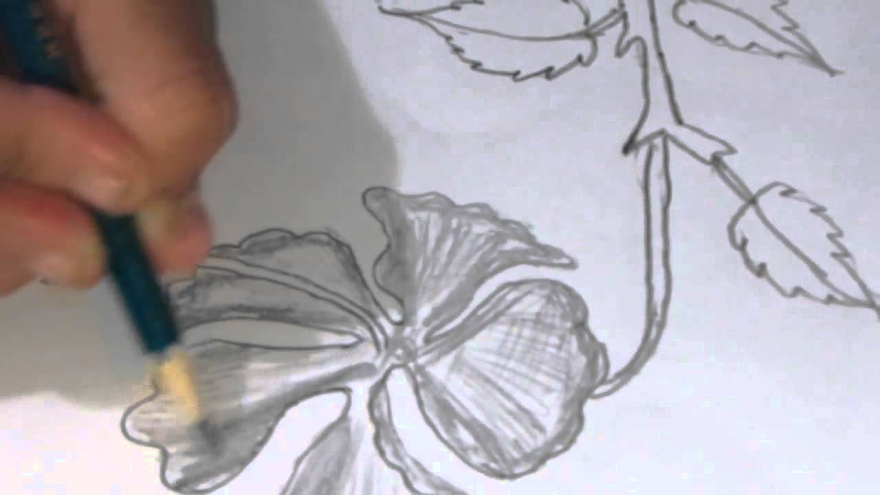 How To Draw And Sketch A Hibiscus Type Flower Using Pencil Youtube