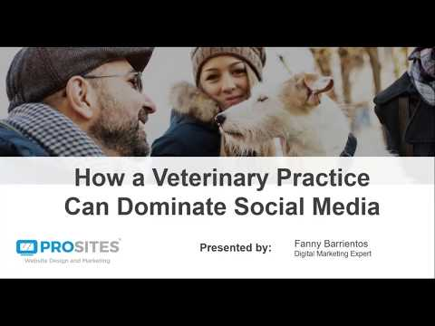How a Vet Practice Can Dominate Social Media