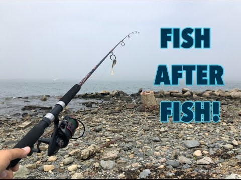 The Fish Would NOT STOP BITING! (Striper Fishing In Boston)