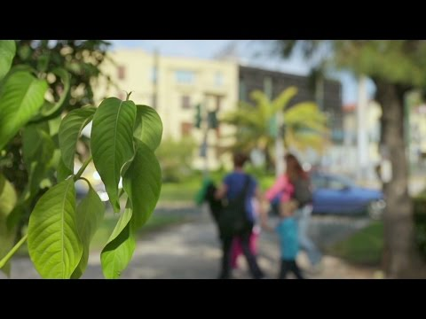 People with children walking city streets in summer, family travel on vacation. Stock Footage