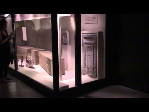 Great American Vacation - Episode 2 - Chicago Field Museum.mov