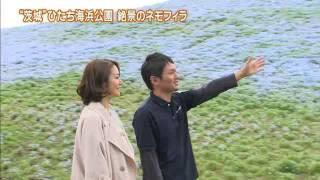 「磯山さやかの旬刊!いばらき」では、磯山さやかさんが国営ひたち海浜...