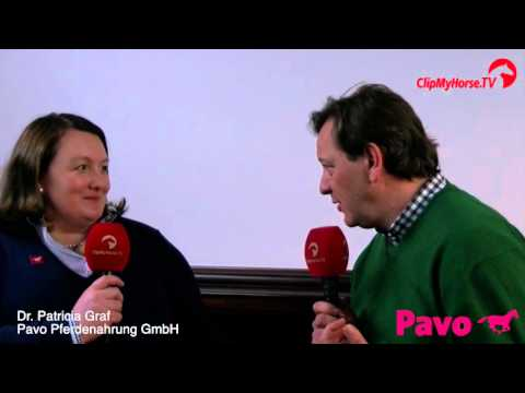 Pavo-Talk: Die Bedeutung von Eiwei in der Pferdeftterung