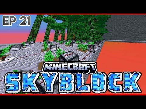 Minecraft Skyblock Ep.21 HUGE TREE FARM! [ArkhamNetwork]