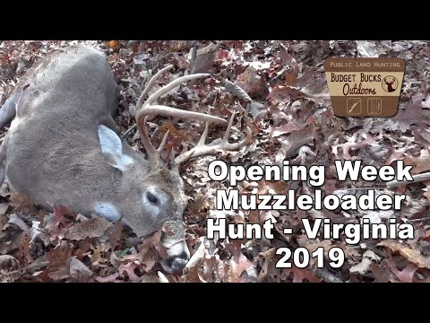 Opening Week Muzzleloader Deer Hunt In Virginia On The National Forest!