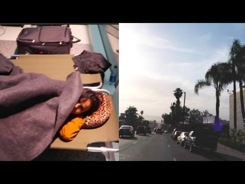 TRAPPED AT THE AIRPORT   L.A. VLOG   Osh and Akela
