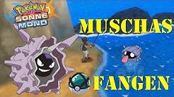 Muschas fangen! | Pokemon Sonne und Mond Tutorial #03