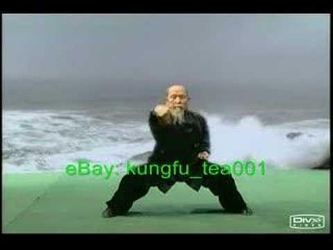 Shaolin & Taoist Health QiGong: Ba Duan Jin KF518-3 eBay