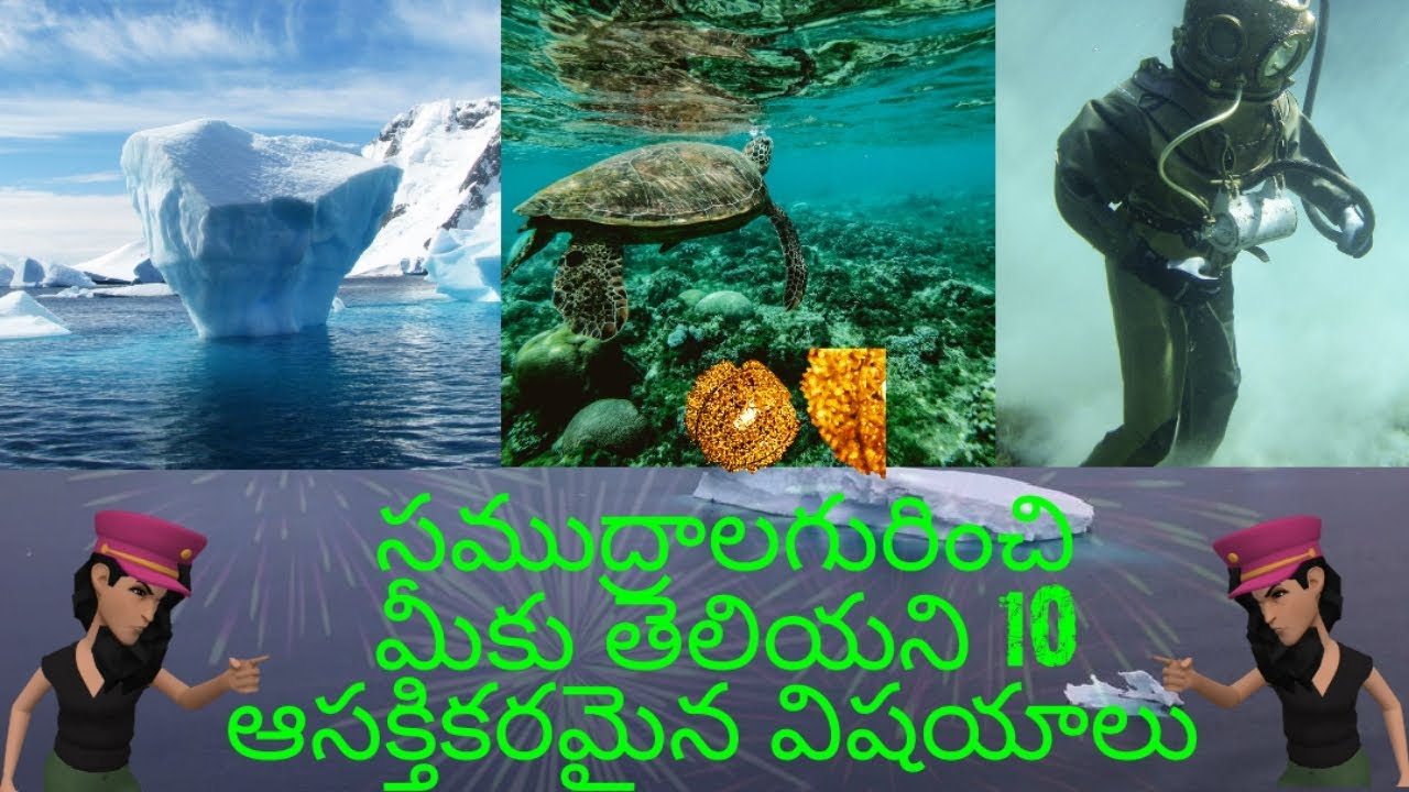 Interesting facts about oceans in telugu| 10 mysteries of oceans in telugu| Facts telugu lo