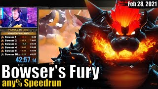 The Fast and Furious Bowser (bowser's fury speedrun)