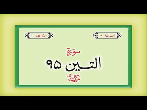 Surah 95 Chapter 95 At Tin Quran with Urdu Hindi Translation