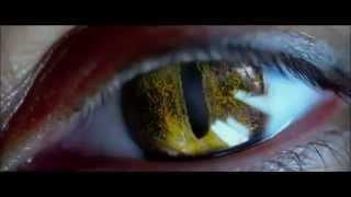 Fan Made Beast Boy Movie Trailer