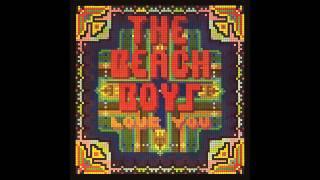 Joel Koster || Solar System || Beach Boys Cover
