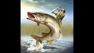 Рыбалка вглухозимье в Краснодарском крае