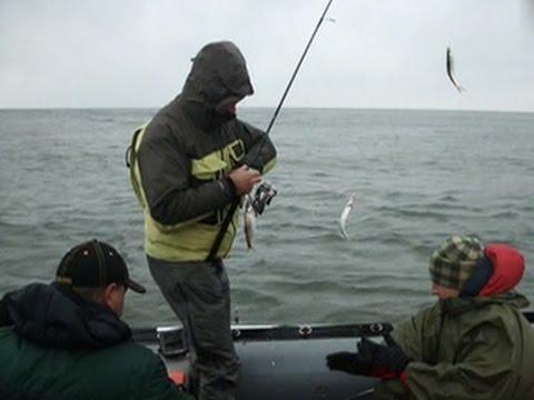 вести о рыбалке на горе море